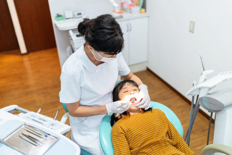 dental fillings in north york